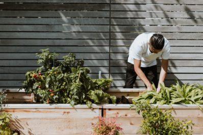 Sådan omlægger du din have